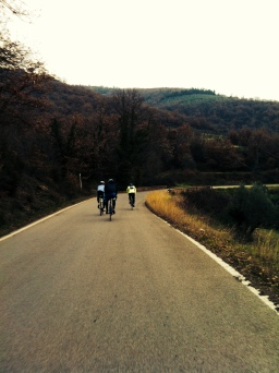 lovely up-and-down terrain between Reggello and Arezzo